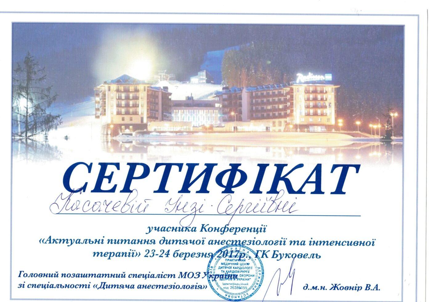 Сертификат подтверждающий участие Косачевой Инги в конференции - Актуальные вопросы детской анестезиологии